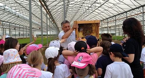 Nell'Azienda agricola Gambaro Barbara e Paolo & C. di Noale (Venezia), Giacomo Peretta illustra il valore delle api in orticoltura ad un gruppo di ragazzi delle cinque classi di una scuola elementare.