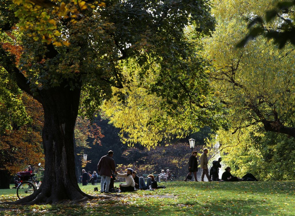 Un parco della Capitale austriaca